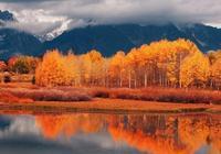 """詩詞鑑賞-秋天很短 思念很長,我們一起""""野望""""這美麗的秋天!"""