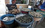 晒晒非洲的海鮮市場:海鮮肥美又實惠,不說了我要去非洲吃海鮮了