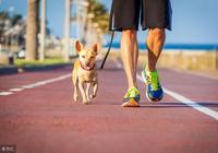 每天步行6000步,身體會收穫5大好處!堅持步行的人都拍手稱讚