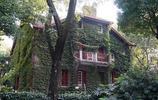 上海思南路遊記,老上海的樣子清晰可見