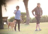 50歲林憶蓮和男友恭碩良去公園遛狗,與小朋友玩耍後和朋友離開