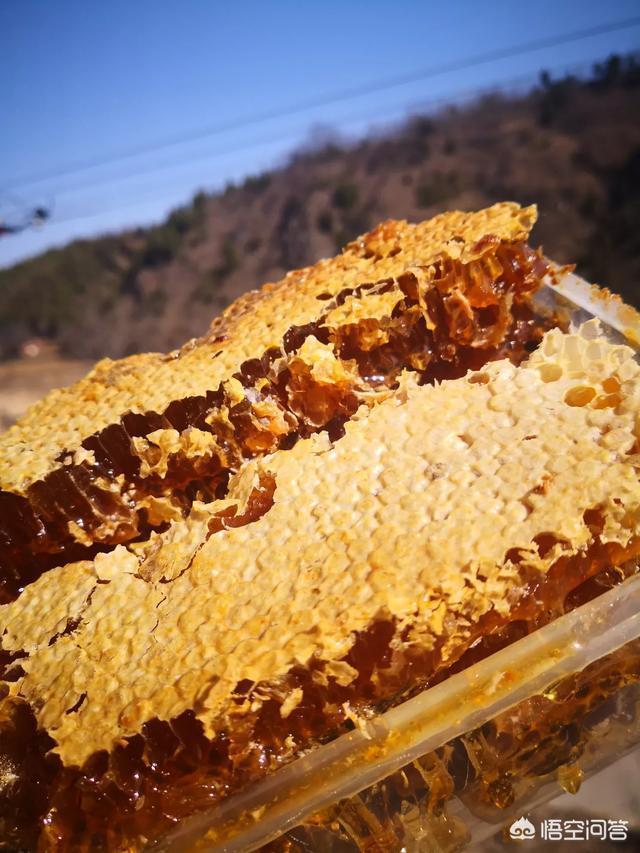 蜂蜜是春季養生之佳品,該怎樣正確選擇和吃呢?