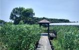 上海最大的天然淡水湖泊澱山湖如畫風景一覽