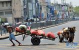 斯里蘭卡勞動者