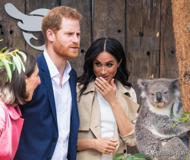 看完凱特王妃激動時畫面,再看看梅根興奮畫面,這對妯娌風格迥異