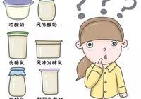 發酵乳、優酪乳、老酸奶、風味酸奶等眾多酸奶到底有啥區別?