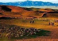 「新疆遊記第3天」布爾津五彩城