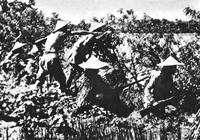 """抗日戰爭時期,太行山的""""麻雀戰"""""""