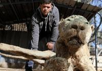 世界上最悲慘的動物園,老虎獅子成了一具具乾屍