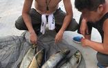 丹江口水庫野生魚:夜釣漁獲真不錯