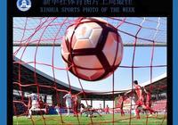 新華社體育圖片上週最佳