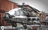 美國陸軍第1步兵師裝備的各種直升機