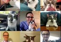 口口聲聲嚷著對貓沒興趣的人,遇上一隻癱瘓貓後,打臉了…
