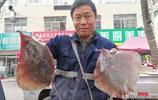 菜市場鮮活海鮮價格不低 4兩重梭子蟹90元一斤 攤主說價格還得漲