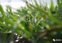 陸羽七茗 徒步飲仙茗,多嬌俏神州陸羽徒步曁穀雨雅集全國啟動