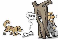 劉二狗偷狗(現代故事)
