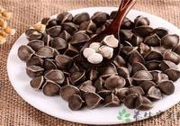 辣木籽有副作用嗎