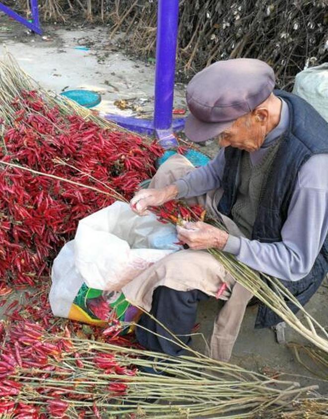 農村8旬老人,幹一天活掙幾塊錢也美滋滋,原來不是為了掙錢