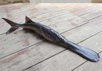 鴨嘴魚是什麼魚?