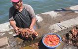 海灘上撿到奇怪石頭,網友指引撬開後,得到了一頓美味