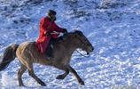三次遠赴烏蘭布統草原,只為拍攝草原上那威武雄壯的蒙古駿馬