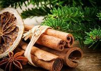 桂皮與豆豉藥用價值