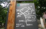 旅途中的風景:陸巷是一座明清廳堂建築保存較為完好的古村落