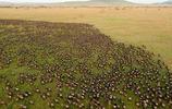 這是全球公認的國家公園,國內黑龍江上榜,你最喜歡哪一個