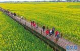廣漢市發掘鄉村風光資源推進農業旅遊產業融合 帶動農民增收致富