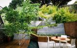 庭院設計:階梯花園,一個山坡被設計師改造後美了一整個庭院