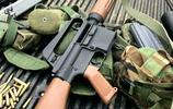 輕武器欣賞,又是一組步槍圖,就是愛步槍