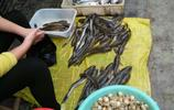 中秋節過後近半個月,沿海小城的海鮮價格怎麼是這個樣子呢