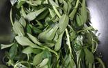 自己盆栽的田七,做成了一道菜,家裡人搶著吃!