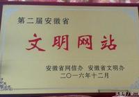 """望江新聞網獲評安徽省""""文明網站"""""""