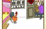 """雞民俗漫畫:談談棗莊地區與""""雞""""相關的民俗習慣"""