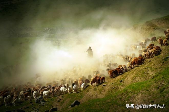 哈薩克族轉場——延續千年的生命大遷徙