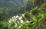 風景圖集:印度尼西亞