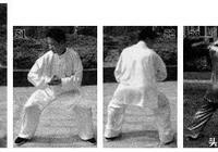 少林青龍拳實戰演示,集百年眾僧擂臺搏擊格鬥近身短打之精華