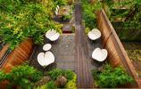 庭院設計:兩個低調而實用的私家花園,就算面積小也可以美上天