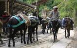 淘金者在哥倫比亞的艱難生活