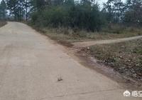 農村統一把田邊人行路打成水泥路,老路有多寬打多寬,也不佔田地,但是就有人故意阻攔,這樣合法嗎?