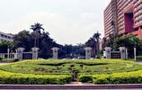 風景圖集:中山大學