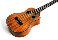 學習電吉他木吉他很迷茫怎麼辦?