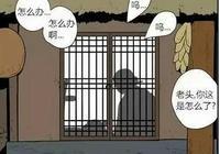 搞笑漫畫:還以為是白頭偕老的愛情,結局卻扎心了
