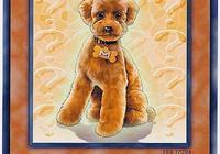 遊戲王 原型是忠犬八公的卡牌,等待了一千年也沒能等來它的主人