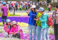 花式演繹北京世園會,《評書話世園》請來了評書大家劉蘭芳