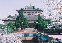 武漢大學為什麼要種很多櫻花樹呢?你怎麼看?