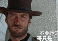 遲暮之年的老殺手拯救自己的宿命,網友:最好的西部世界電影!