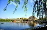 西安有個免費公園,同樣是歷史遺蹟,卻比大唐芙蓉園還要好