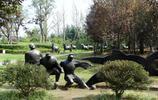 風景圖集:江蘇項王故里,楚地漢風為主,兼具宮廷建築風格